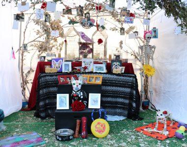 2015 Altar (2)